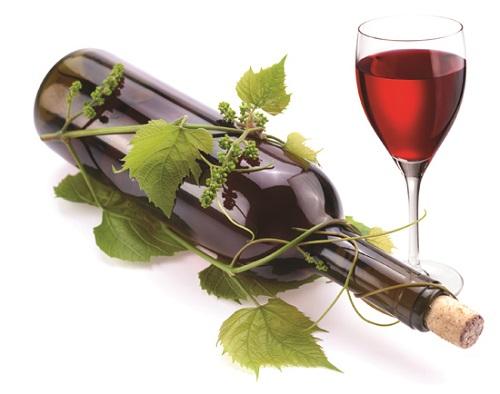 Các polyphenol trong rượu vang góp phần chống lại vi khuẩn gây bệnh răng miệng.