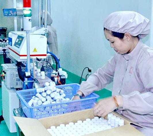 Ngành Dược Việt Nam đang trên đà phát triển